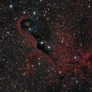 IC1396 The Elephant's Trunk Nebula,                                404timc