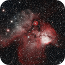 The Skull and Crossbones Nebula (NGC 2467),                                DiscoDuck