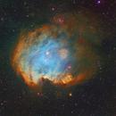 NGC 2174 in Orion, Monkey's head nebula,                                JNieto