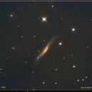 NGC 3079 -Starburst Galaxy in UMa.,                                astroeyes