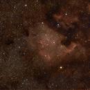 North America Nebula (NGC 7000),                                Ed Magowan