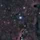 IC 1396 Elephant's Trunk Nebula,                                Mareko