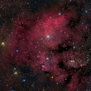 NGC 7822,                                Mike Miller