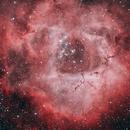 Rosette Nebula Bicolor,                                Wes Higgins