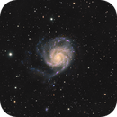 Close Up of M101, The Pinwheel Galaxy,                                riot1013