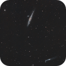 Ngc 4631 and Ngc 4656 ,The Whale and Hockey Stick Galaxies,                                Vlaams59
