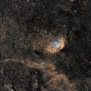 Sh2-101 – The Tulip Nebula HST,                                Kirk