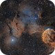 IC 443 and 444 - The Jelly Fish (2 Pane),                                Paddy Gilliland