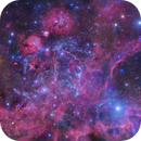 The Vela Supernova Remnant [Gendler/Colombari/DSS2],                                Roberto Colombari