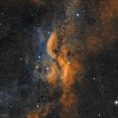 DWB 111 Propeller Nebula,                                Alexander Sorokin
