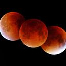 Total Lunar Eclipse - September 27-28, 2015,                                Odilon Simões Corrêa