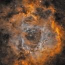 Rosettennebel NGC2244,                                Andreas Zirke