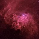 Flaming Star Nebula IC405 BiColor,                                Hartmuth Kintzel