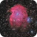 NGC2175 HaLRGB,                                Sergiy_Vakulenko