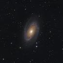 Bode's Galaxy (M81),                                Kevin Whiteside