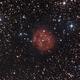 Cocoon Nebula IC5146,                                columbiapete