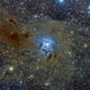 NGC 7023 - The Iris nebula,                                Bill in Nova Scotia