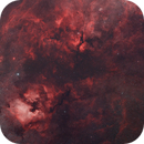 Mosaic of Northern Cygnus,                                Scott Tucker