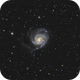 M101, The Pinwheel Galaxy,                                Mason Steidle