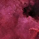 NGC 7000,                                Clem