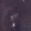 Orion (M78),                                Alexis Capoen