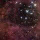Rosette Nebula,                                hd0h