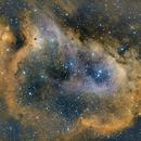 The Soul Nebula Bicolor,                                Wes Higgins