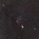 Orion,                                David Brodie