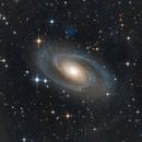 M81,                                Panyik Lénárd