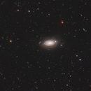 M63 (Sunflower Galaxy),                                Wilson Yam