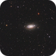 M63 (Sunflower Galaxy),                                Wilson Yam