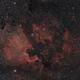 NGC 7000 - The North America Nebula,                                ThomasR