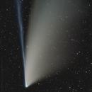 Forgotten Data, Comet NEOWISE Final Night Before Moon Light Interferes,                                Dan Bartlett