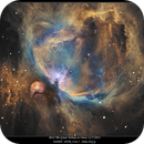 M42 The Great Nebula in Orion in Narrowband,                                rigel123