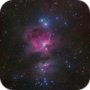M42 and M43, The Great Orion Nebula,                                Tim Stone