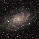 M33 (Triangulum Galaxy) from Falls River,                                Vincent Giranda