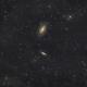 M81 region,                                Gabe Shaughnessy