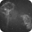 IC 1805 and  IC 1848,                                Pidrman Jan