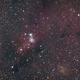 Cone Nebula,                                Scotty Bishop