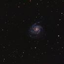 M101,                                André