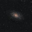 M33,                                Marcus Jungwirth