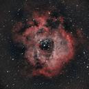 Rosette Nebula,                                Casey Offord
