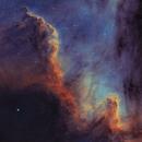Cygnus wall,                                Artūras Medvedevas