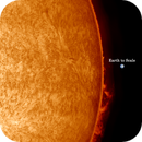 Disc and Prominences,                                Stephen Jennette