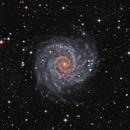 M74 (HaLRGB),                                KuriousGeorge