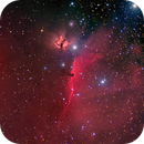 Wide-field image of the Horsehead Nebula,                                Kevin Dixon