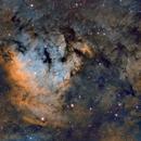 NGC 7822 - SHO,                                José Tapia Janet