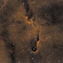 Elephant's Trunk Nebula,                                Mark Minor