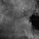 The Wall, NGC 6997, NGC 7000 (Ha),                                Nikola Nikolov