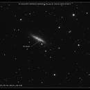 SN 2014J in M82,                                Predator